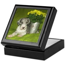 Merle Great Dane puppy w/ flowers Keepsake Box