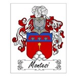 Montesi Family Crest Small Poster