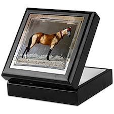 Akhal-Teke Horse Keepsake Box