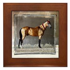 Akhal-Teke Horse Framed Tile