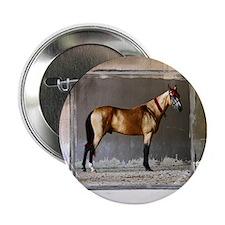 """Akhal-Teke Horse 2.25"""" Button"""