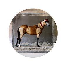 """Akhal-Teke Horse 3.5"""" Button"""