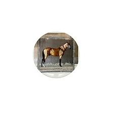 Akhal-Teke Horse Mini Button (10 pack)