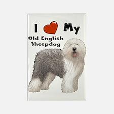 I Love My English Sheepdog Rectangle Magnet