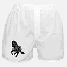 Black Stallion Horse Boxer Shorts
