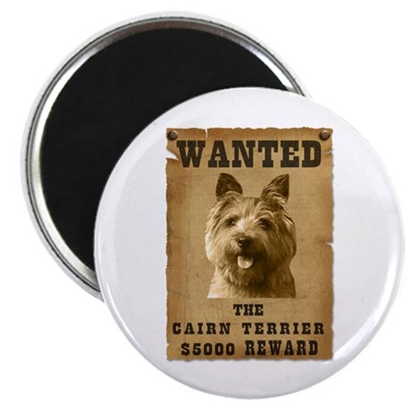 """""""Wanted"""" Cairn Terrier 2.25"""" Magnet (10 pack)"""