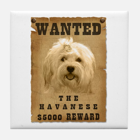 """Wanted"" Havanese Tile Coaster"