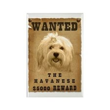 """""""Wanted"""" Havanese Rectangle Magnet"""