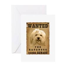 """Wanted"" Havanese Greeting Card"