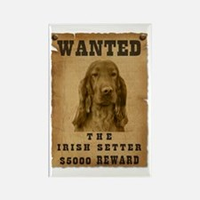 """""""Wanted"""" Irish Setter Rectangle Magnet (10 pack)"""