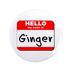 Hello my name is Ginger 3.5