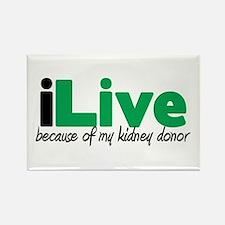 iLive Kidney Rectangle Magnet