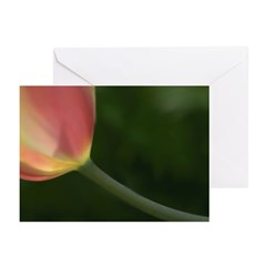 G.Michael Brown Greeting Cards (Pk of 20)
