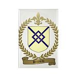 BRUNEAU Family Crest Rectangle Magnet (10 pack)