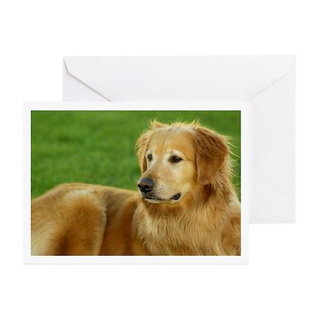 Golden Retriever Greeting Cards (Pk of 10)