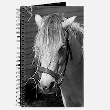 Bad Hair Day Pony Journal
