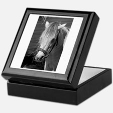 Bad Hair Day Pony Keepsake Box