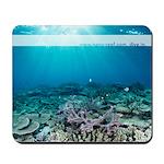 Nano-Reef.com Mousepad