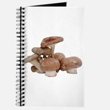 Some Mushrooms On Your Journal