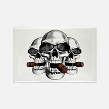 Cool Skulls Rectangle Magnet (10 pack)