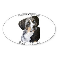 New Section Oval Decal