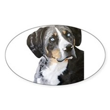 Catahoula Blue Eyes Oval Decal