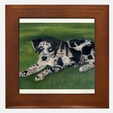 Catahoula Puppy Framed Tile