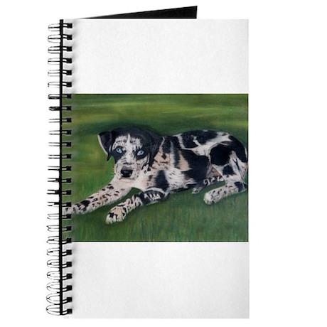 Catahoula Puppy Journal