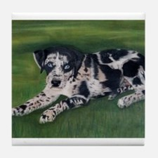 Catahoula Puppy Tile Coaster
