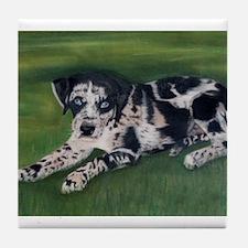 Catahoula Puppy Tile Coaster