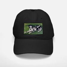 Catahoula Puppy Baseball Hat