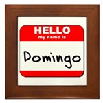 Hello my name is Domingo Framed Tile