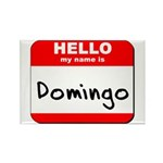 Hello my name is Domingo Rectangle Magnet (10 pack