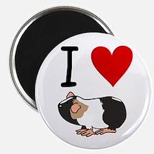 Guinea pig lovers Magnet