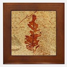 Red Fern Fossil Framed Art Tile