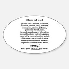 """""""Obama in 1 Word"""" Oval Decal"""