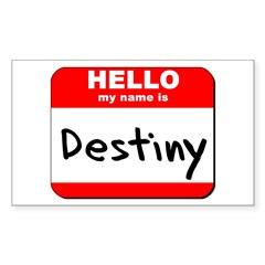 Hello my name is Destiny Rectangle Decal