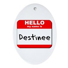 Hello my name is Destinee Oval Ornament