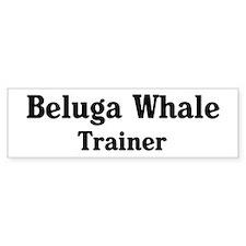 Beluga Whale trainer Bumper Car Sticker