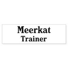 Meerkat trainer Bumper Bumper Sticker