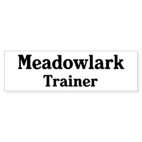 Meadowlark trainer Bumper Sticker (10 pk)
