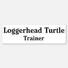 Loggerhead Turtle trainer Bumper Bumper Bumper Sticker