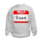 Hello my name is Dane Kids Sweatshirt