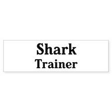 Shark trainer Bumper Car Sticker