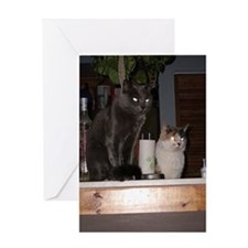 Halloween Cards & Gifts Greeting Card