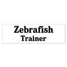 Zebrafish trainer Bumper Car Sticker