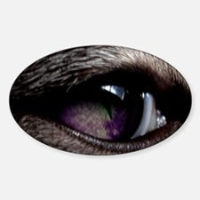 Spooky Violet Cat's Eye Oval Decal