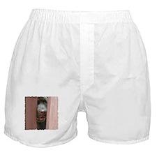 Brown Noser Boxer Shorts
