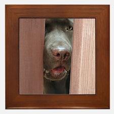Brown Noser Framed Tile