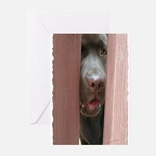 Brown Noser Greeting Cards (Pk of 10)